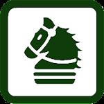 Chess News Icon