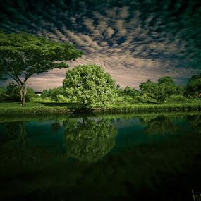 by Keris Tuah - Nature Up Close Trees & Bushes