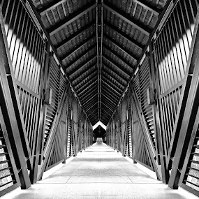 The Turi Corridor by Alit  Apriyana - Buildings & Architecture Other Exteriors