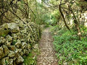 Photo: Camí de Sa Font d'en Simó, prop de Sant Joan des Vergers- Maó