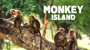 Monkey Island thumbnail