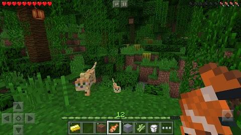 Minecraft: Pocket Edition Screenshot 17