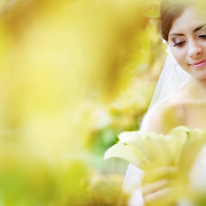 Wedding photographer Irina Kolychenkova (rinafoto). Photo of 20.01.2014