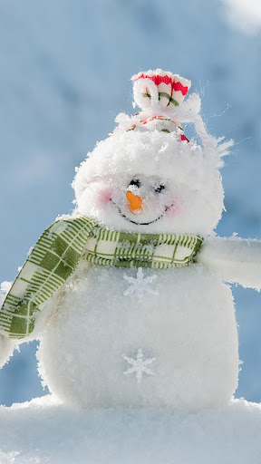 Snowman Christmas Gift. LWP