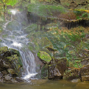 Mossy Waterfall by Bryant Mountjoy - Nature Up Close Water