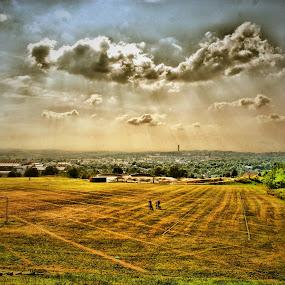 Bradford by Andrew Balsillie - Landscapes Prairies, Meadows & Fields