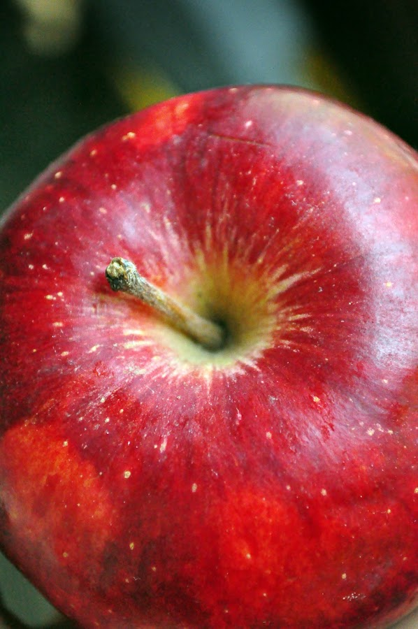 by Shatoddruh Saha - Food & Drink Fruits & Vegetables ( #apple, #nikon, #fruit, #closeup, #likeforlikes )