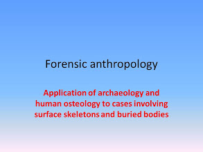 Photo: FSU Anthropology offers a forensic anthropology class (fall 2012) and coordinates in teaching a similar class for the Institute of Police Technology and Management in Jacksonville.