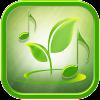 Naturgeräusche Für Schlaf Und Entspannung