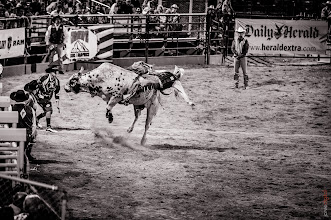 """Photo: """"Ride em' Cowboy""""  From wednesday at the Spanish Fork City #rodeo  I'm got a bridal shoot and formals shoot edited today so I thought I'd quickly do a for fun shoot too."""