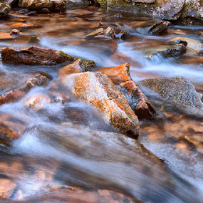 Rocks In A Strem by John Goff - Landscapes Waterscapes ( mountain, seven, devils, carolina, water falls, north )
