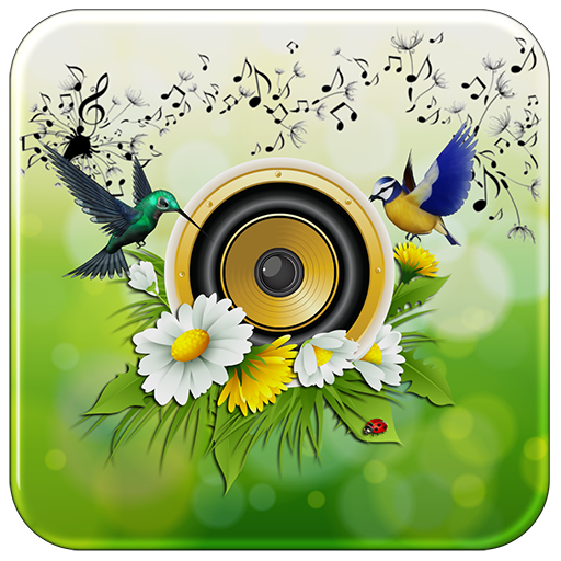 Sweet Birds Ringtones Notifications
