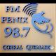 Fm Fenix del Valle 98.7 apk