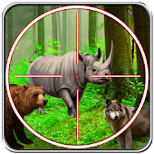 Hunt Jungle Animals