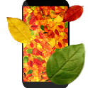 Autumn leaves 3D LWP icon