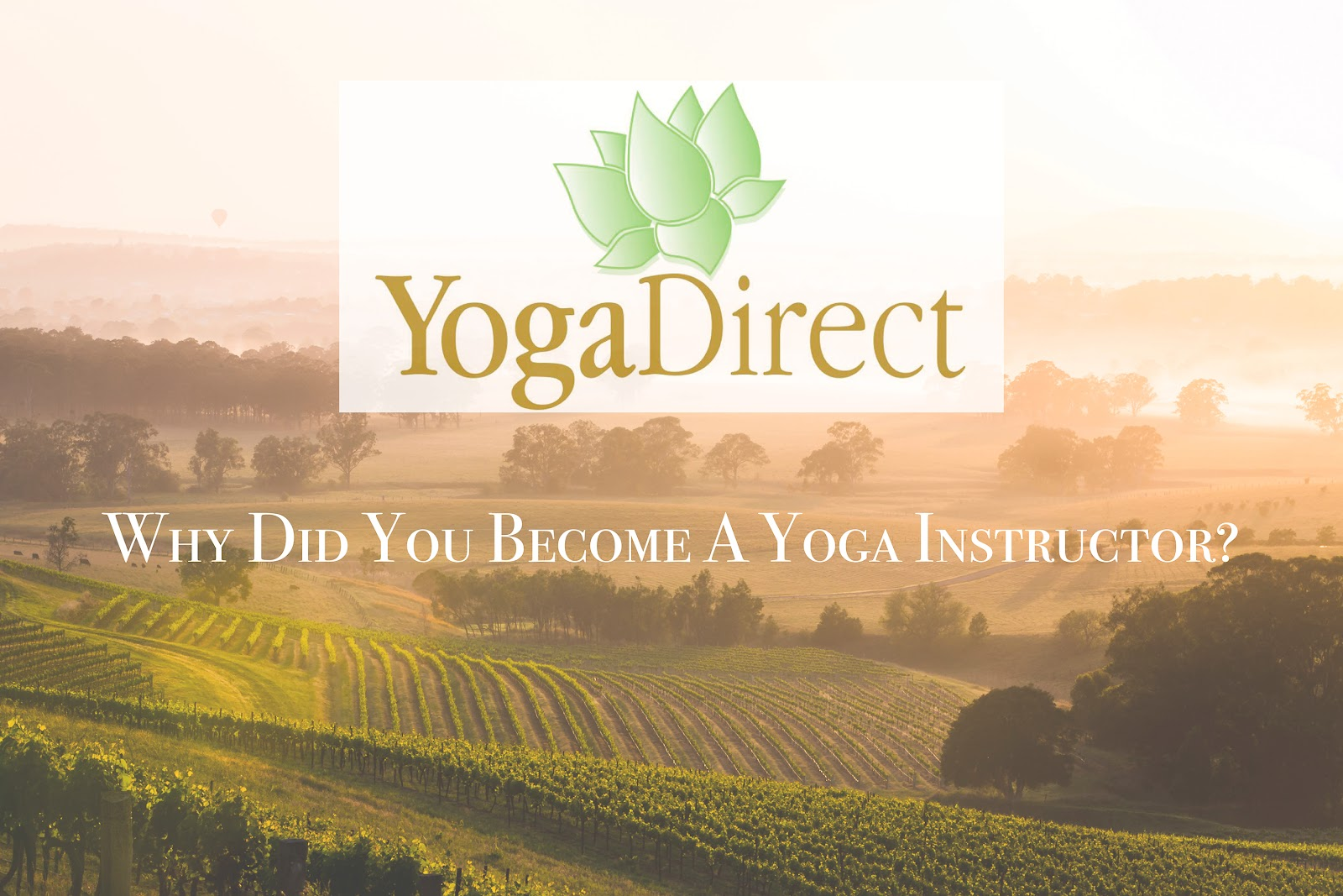 Yoga Direct Graphic 2.jpg