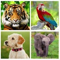 Animal Sounds - Animals for Kids, Learn Animals icon