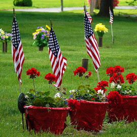 In Rememberance ~  by Annette Crivellaro - Public Holidays July 4th