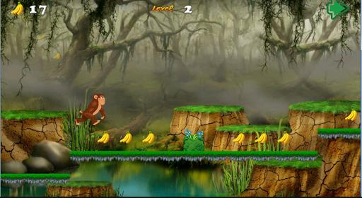 Jungle monkey world