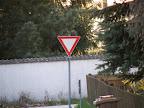 Zoom_Freihand2_20x.JPG