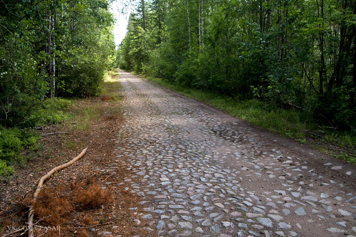 Старая Финская дорога