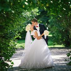 Wedding photographer Igor Shipulin (IGSHI). Photo of 17.11.2016