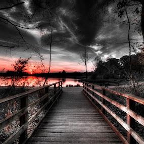 Beyond the Boardwalk by Ian Taylor - City,  Street & Park  Historic Districts ( water, uk, sky, hardwick park, sunset, sedgefield, lake, pond, boardwalk, boards )