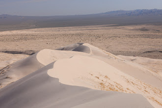 Photo: Sand Dunes in Mojave National Preserve, California