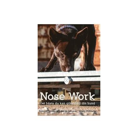 Nosework – det bästa du kan göra med din hund