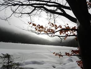 Photo: 01 Kleiner Arbersee: Sonne bricht durch (27. Dezember 2011)