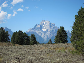 Photo: Mt Moran over the sagebrush