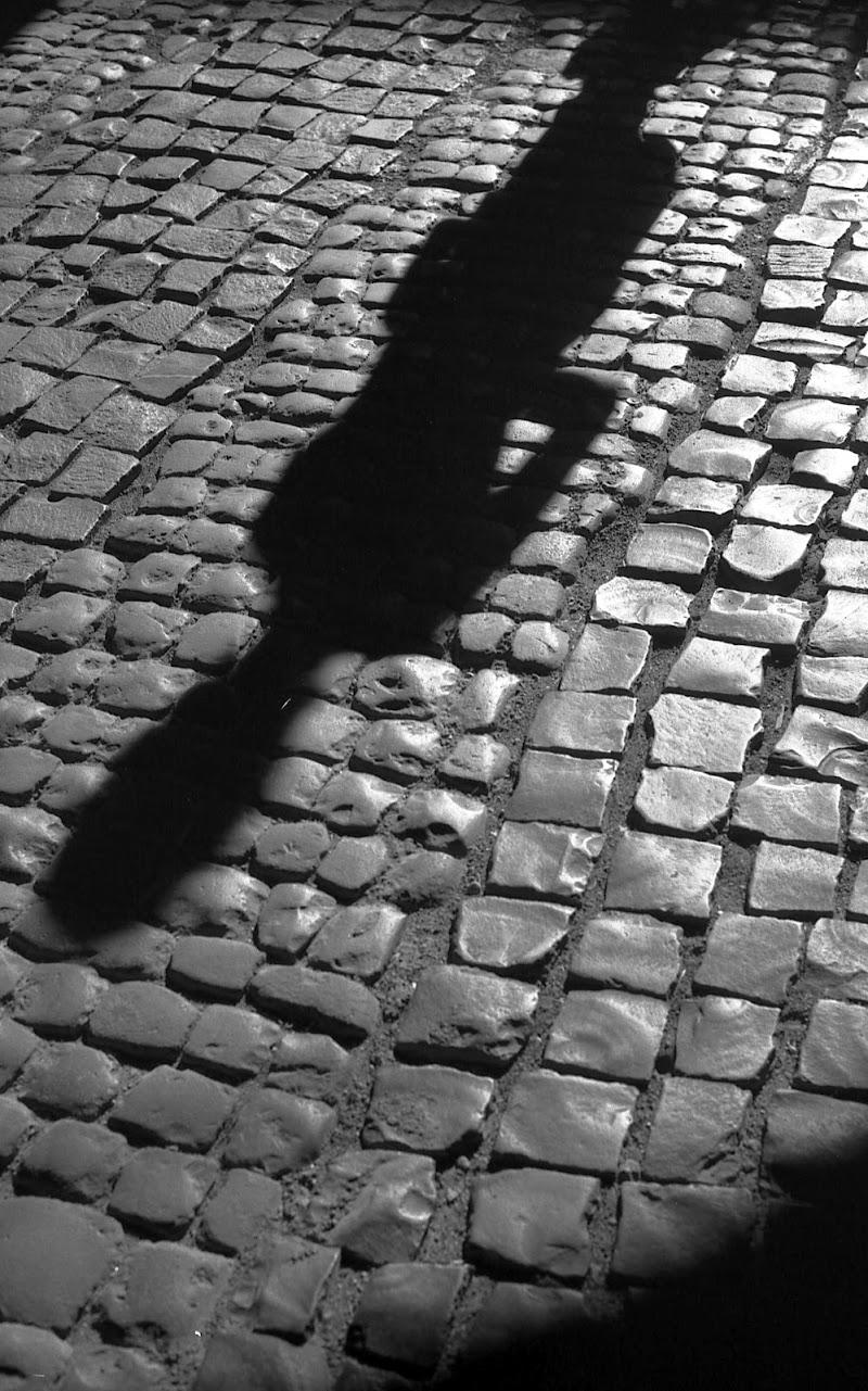 Nella propria ombra di effemarini