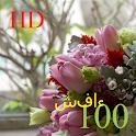 100 شفاء HD icon