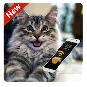 App Anti-Cat Repellent - Cat Whistle and Cat Teaser apk for kindle fire