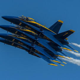 Blue Angels Echelon Pass by Ron Malec - Transportation Airplanes ( airshow, mcas beaufort, blue angels )