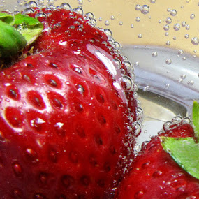 Strawberry Bubbles by William Schmid - Food & Drink Fruits & Vegetables