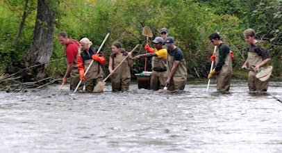 Photo: Photo Credit: Dave Brenner - From 2010 SNRE New Student Orientation at the U-M Biostation - I helped lead the electrofishing sections (we caught the biggest fish!)