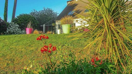 La propriété du Verdon, Fleurs de printemps