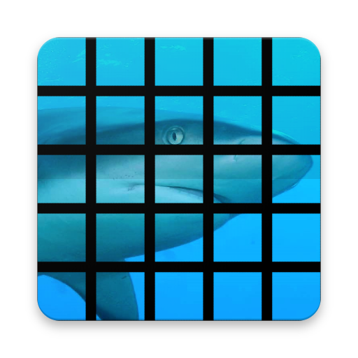 Shark Tile Puzzle Game file APK for Gaming PC/PS3/PS4 Smart TV