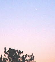Photo: 11.1.2007 komeetta McNaught erottui jopa vaalealta aamutaivaalta paljain silmin