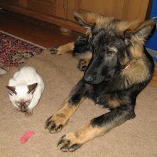 Photo: Ze schelen samen maar 5 dagen in leeftijd!