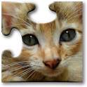 Cats Jigsaw Puzzles for Kids icon