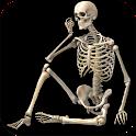 Skeletal System (Anatomy) icon