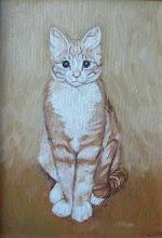 Photo: Cat Sketch