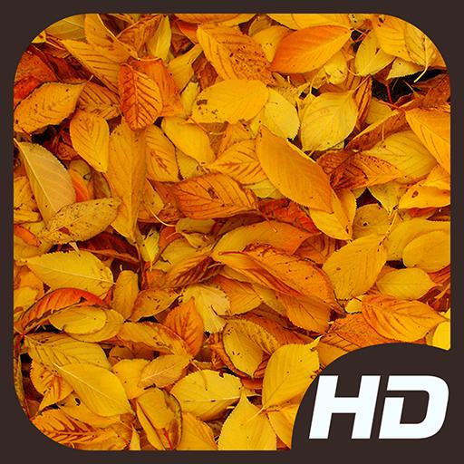Autumn Wallpapers 娛樂 App LOGO-硬是要APP