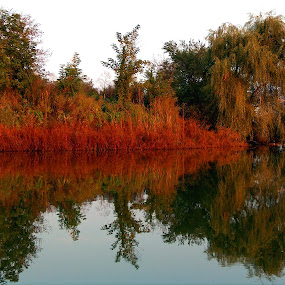 by Dorian Radu - Landscapes Waterscapes ( pwcreflections )