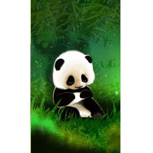 Sleepy Panda Wallpaper HD - náhled