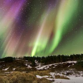 Hransvatn by Kaspars Dzenis - Uncategorized All Uncategorized ( iceland, winter, stars, aurora, northern lights, night, lake, landscape )