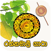 phone software of english sinhala malalasekara dictionary