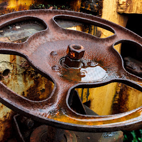 Close up of rust wheel on yellow freight train car. by Paul Krug - Transportation Trains ( old, technology, wheel, railroad, vehicle, retro, yellow, travel, transportation, used, roanoke, iron, transport, metal, train, virginia, wet, industry, rust, classic, brake, closeup, vintage, wheels, paint, heavy, museum, steel, up, history, huge, water. nut, system, railway, industrial, antique )